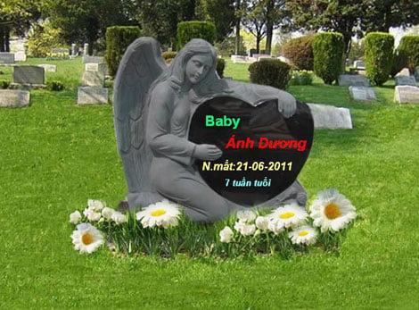 Một mộ phần online khi cháu bé chỉ mới 7 tuần tuổi