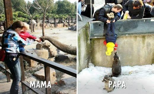 """Khi được đi sở thú với các mẹ và các bố. Có vẻ như các ông bố thích """"chơi trò mạo hiểm""""."""
