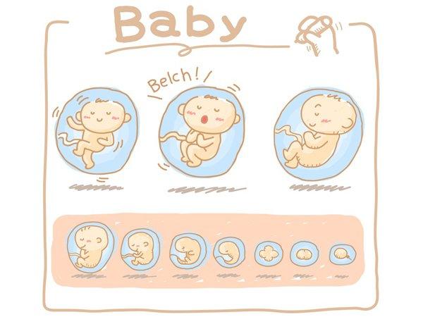 Tiếng nấc của thai nhi có ý nghĩa gì, liệu mẹ có biết?