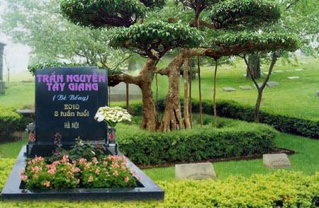 Một ngôi mộ ảo được lập nên cho những thai nhi tại nghĩa trang online.